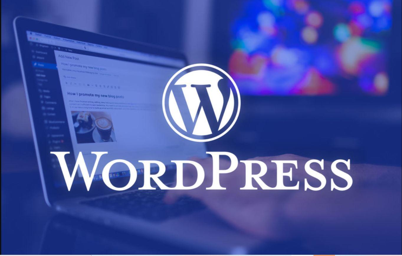 lí do phải bảo mật website wordpress halo media