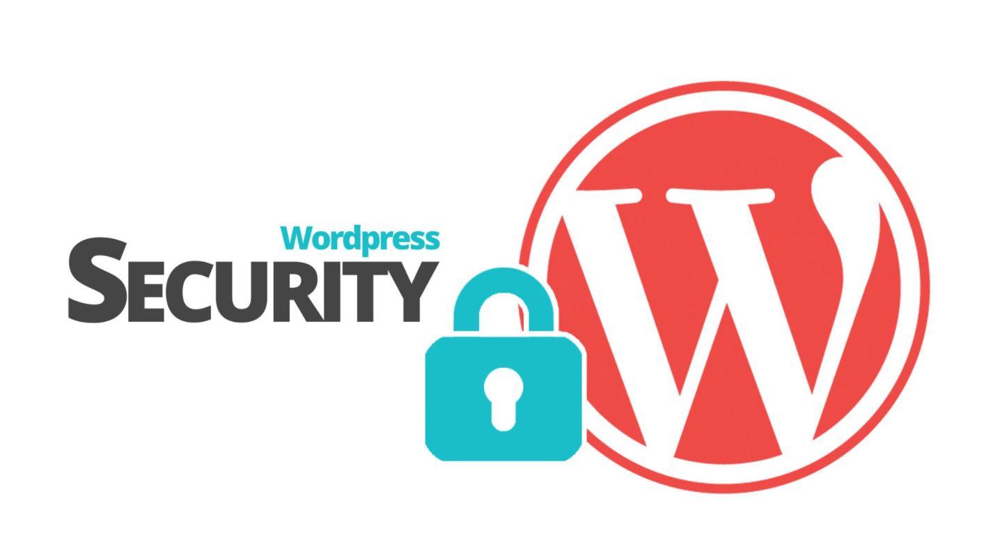 bảo mật website wordpress halo media