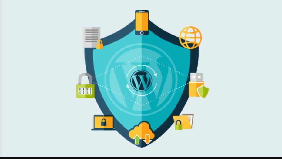 bảo mật website wordpress hiệu quả halo media