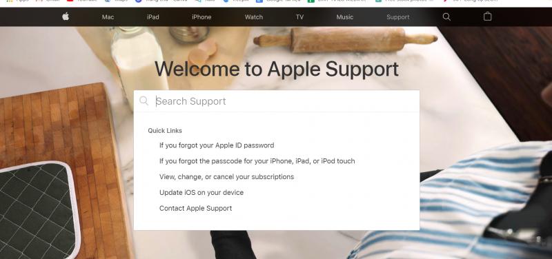 FAQ Landing page Apple halo media