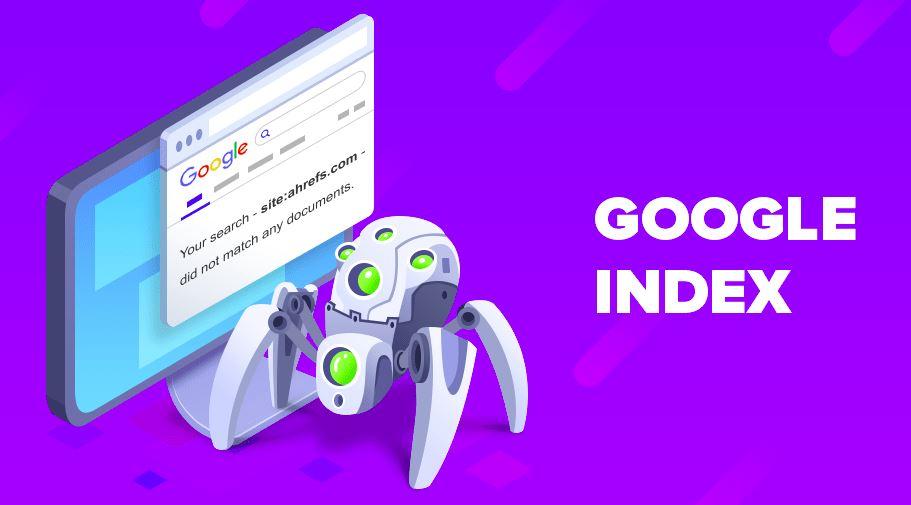 công cụ tìm kiếm google index halo media