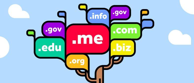 tên miền domain halo media